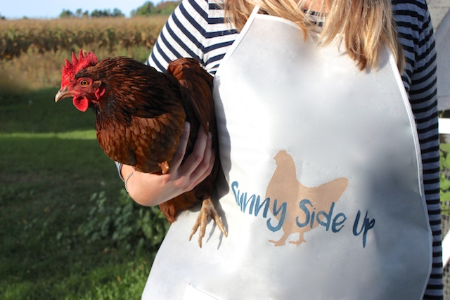 sunny-side-up-apron-chicken-closeup