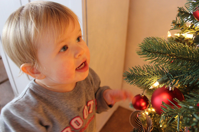 cloverhill-christmas-lucy-tree3