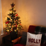 christmas-trees-2012