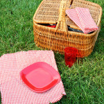 Frayed Gingham Picnic Napkins