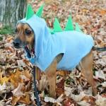 dinosaur-dog-costume