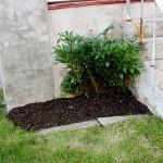 city-garden-prep
