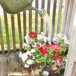 summer-planter