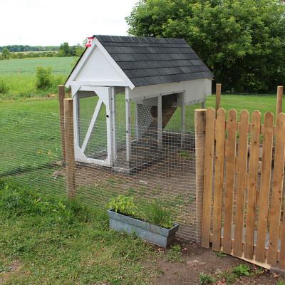 The Chicken Coop {Part 2}