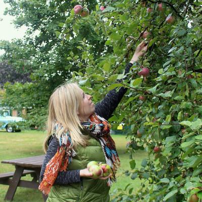 A Taste of Fall – Kayaking, Harvest Festival and Picking Apples
