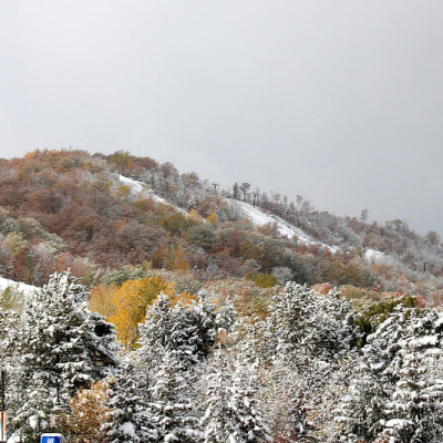 Seasons Changing at Blue Mountain