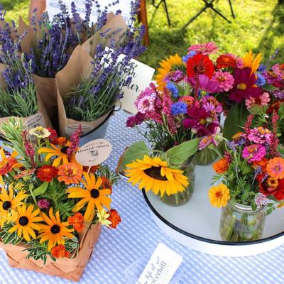 Cloverhill Flowers – Fresh from the Farm