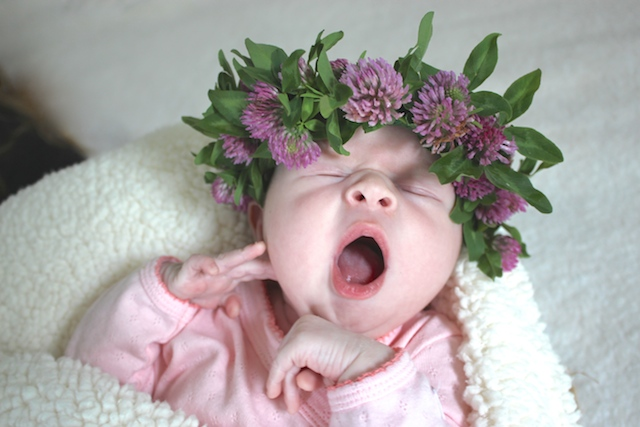 lucy-birth-announcement-flower-crown-yawn