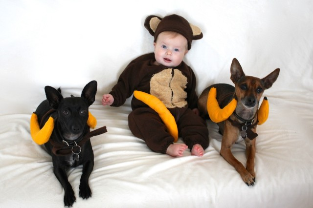 baby-monkey-costume-dogs-banana-costume