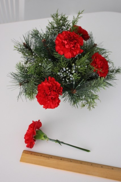 measure-red-carnation