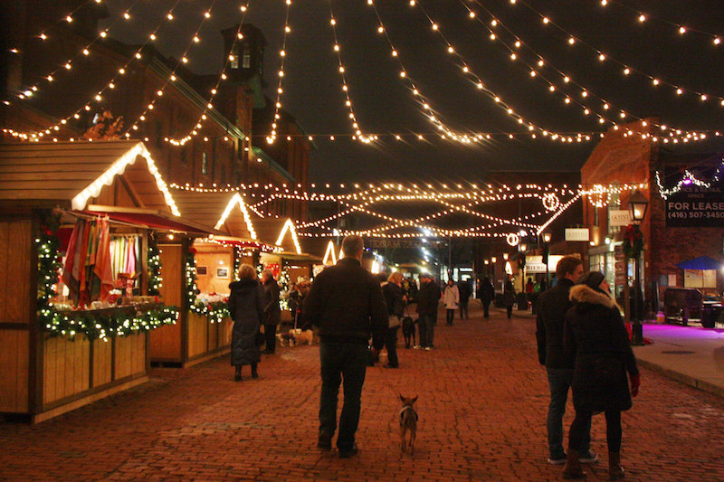 christmas-market-dog