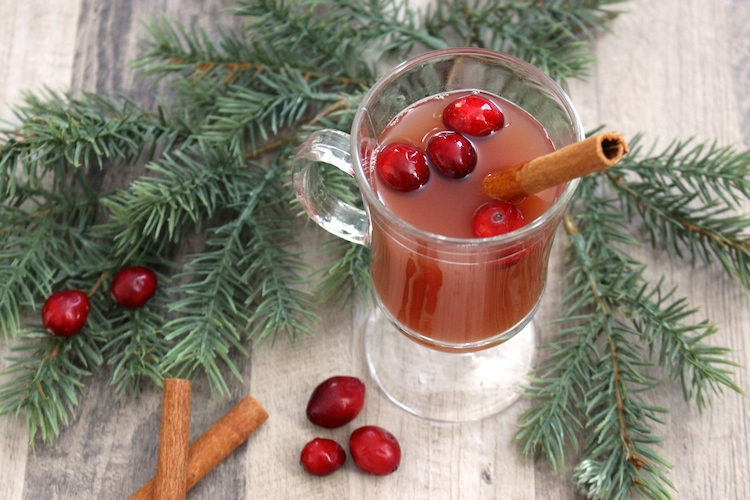 slow-cooker-apple-cider-cranberry