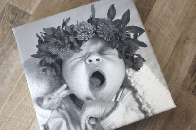 staples-canvas-baby-print
