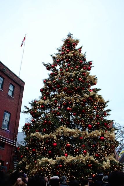 toronto-christmas-market-big-tree-2016