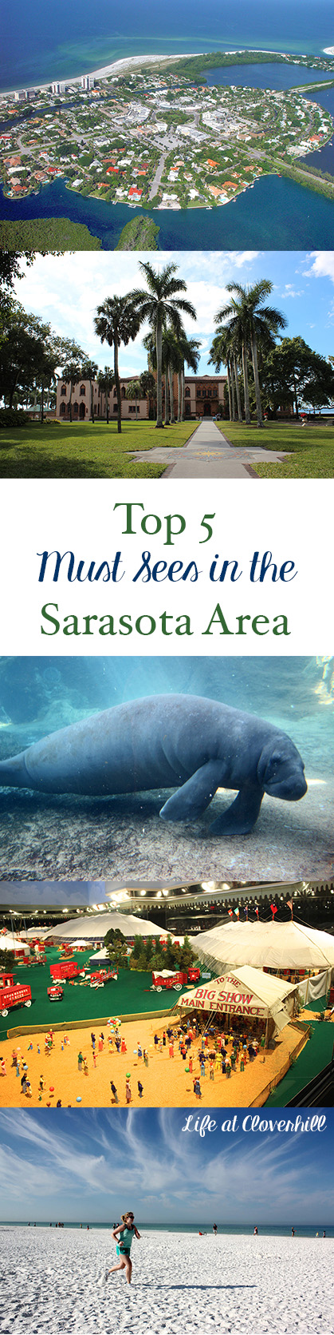top-5-must-visit-sarasota