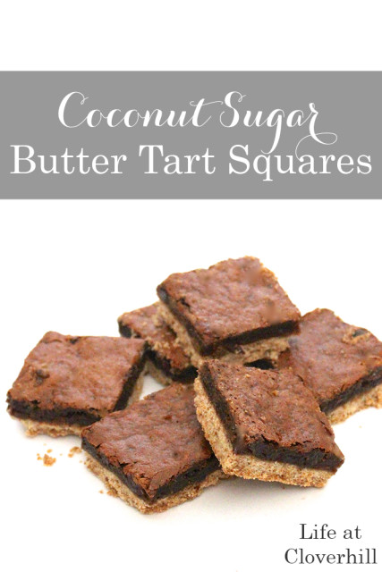 organic-coconut-sugar-butter-tart-squares