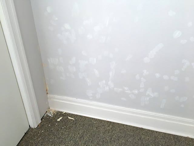 spackle-wall