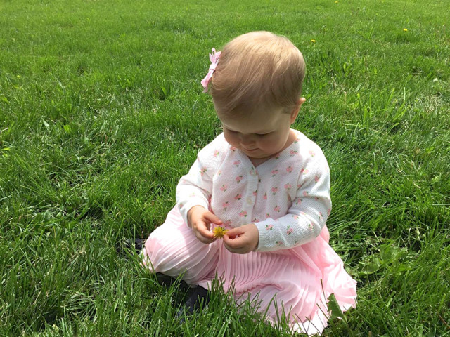 baby-picking-flowers