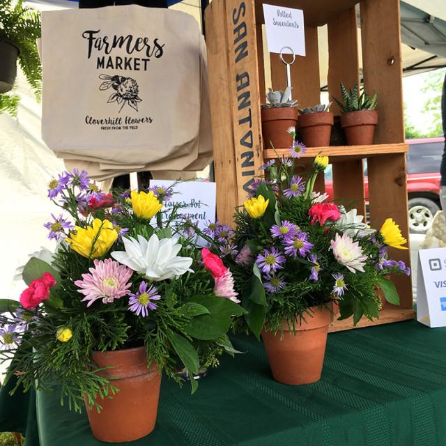 cloverhill-tote-bag-flower-pot