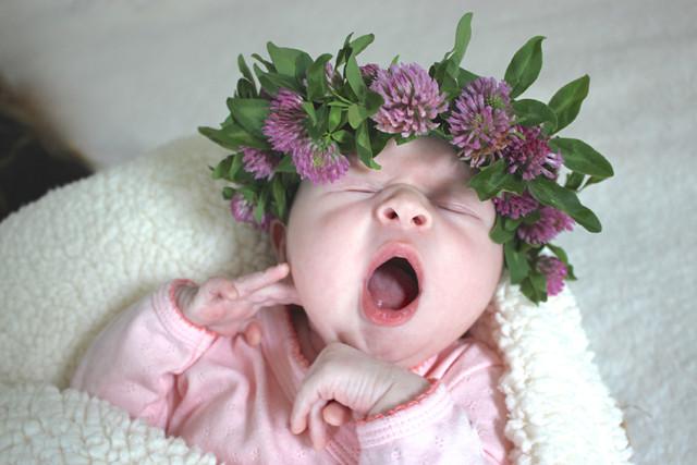 lucy-newborn-flower-crown