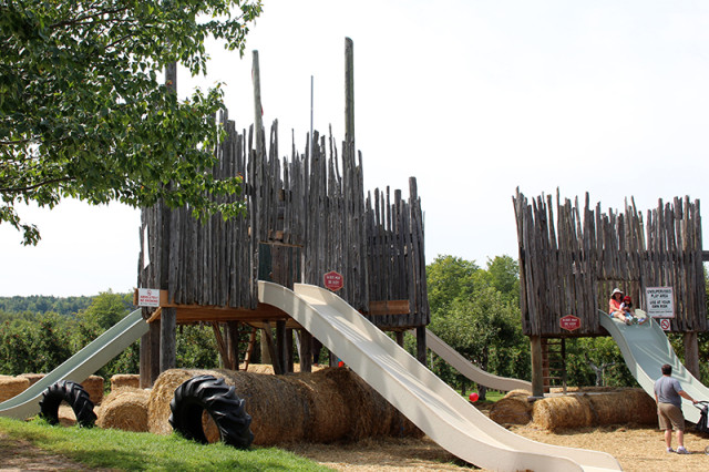 chudleighs_playground