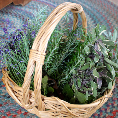 Preserving our Summer Herbs and Flowers