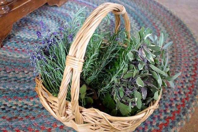 basket-herbs