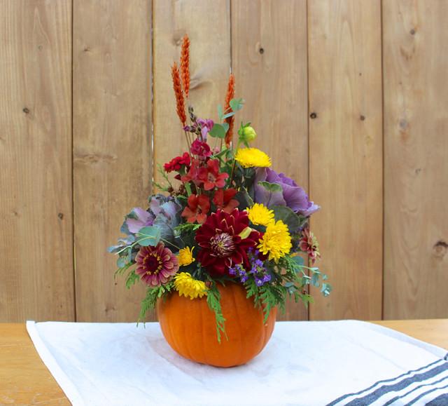 cloverhill-flowers-pumpkin-arrangements