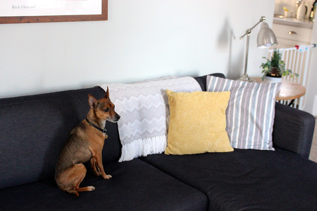living-room-updates