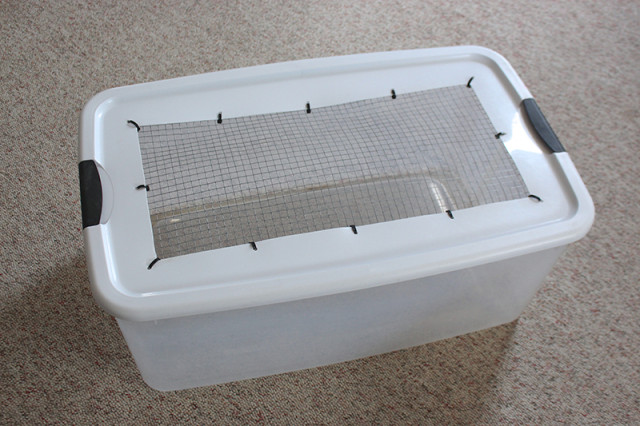 diy-chick-brooder-metal-top
