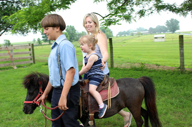 ronks-lancaster-pa-lil-country-store-horse-rides